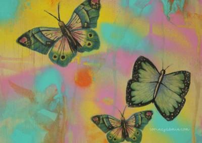 butterflies mixed media