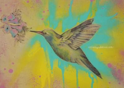 hummingbird aqua mixed media wm